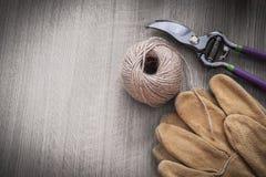 Insieme di agricoltura degli strumenti sul agricultur di immagine dello spazio della copia del bordo di legno Fotografie Stock Libere da Diritti