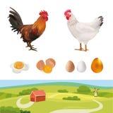 Insieme di agricoltura Gallo realistico, gallina, paesaggio dell'azienda agricola, uova Illustrazione di vettore Azienda agricola Immagini Stock Libere da Diritti