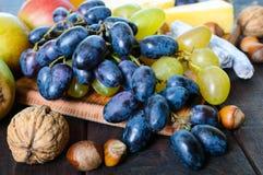 Insieme di autunno dei prodotti: l'uva, noci, nocciole, prugne, miele, formaggio, l'uva passa, pere, ha asciugato i mirtilli ross Fotografie Stock