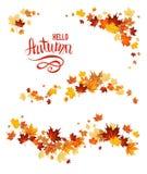 Insieme di autunno delle foglie di acero illustrazione di stock