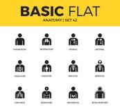 Insieme di base delle icone di anatomia illustrazione di stock