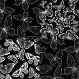 Insieme di bello fondo senza cuciture in bianco e nero monocromatico con le farfalle Immagini Stock