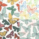Insieme di bello fondo senza cuciture con colore dell'annata delle farfalle Fotografia Stock