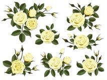 Insieme di boutonniere della rosa di giallo Fotografia Stock Libera da Diritti
