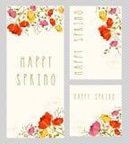 Insieme di carta dell'invito della primavera Fotografia Stock