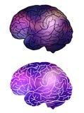 Insieme di cervello umano con fondo cosmico Universo e nebulose illustrazione vettoriale