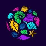 Insieme di colore delle siluette delle conchiglie nel cerchio Simbolo di vettore Fotografie Stock