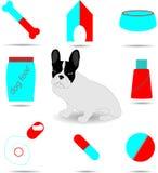 Insieme di colore di cura e del cane del veterinario Fotografie Stock