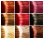 Insieme di colori dei capelli. Tinte Immagine Stock