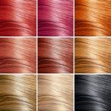 Insieme di colori dei capelli. Tinte Immagini Stock