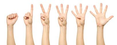 Insieme di conteggio del segno femminile della mano Immagine Stock