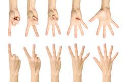 Insieme di conteggio del segno femminile della mano isolato Immagini Stock Libere da Diritti