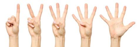 Insieme di conteggio del segno femminile della mano isolato Immagini Stock