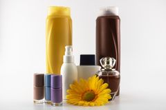 Insieme di cura che consiste dello sciampo, parfume, lozione, sapone, smalto, crema del sole fotografia stock libera da diritti