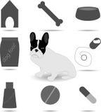 Insieme di cura e del cane del veterinario Immagini Stock Libere da Diritti