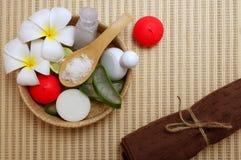 Insieme di cura di pelle, sale, sapone, crema, frutta di cirtus, aloe Vera Fotografie Stock Libere da Diritti
