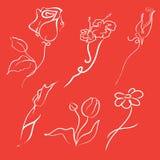 Insieme di disegno dei fiori Fotografie Stock