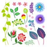 Insieme di elementi colourful dell'illustrazione di divertimento floreale royalty illustrazione gratis