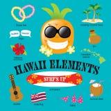 Insieme di elementi dell'Hawai Fotografia Stock