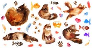Insieme di elementi disegnato a mano dell'acquerello di gatto lanuginoso nelle pose differenti: pigro, trovandosi, sognando, dorm illustrazione vettoriale