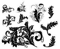 Insieme di elemento di disegno floreale Immagine Stock Libera da Diritti
