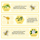 Insieme di etichetta del miele per l'insegna Immagini Stock Libere da Diritti