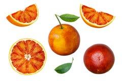 Insieme di frutta arancio rossa con le foglie verdi isolate su fondo bianco Immagine Stock Libera da Diritti