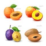 Insieme di frutta poligonale - albicocca, pesca, prugna, sapota Vettore Immagini Stock