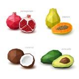 Insieme di frutta poligonale - melograno, papaia, noce di cocco, avocado Fotografie Stock Libere da Diritti