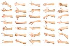 Insieme di immagini multiple dei gesti di mano caucasici femminili isolato immagine stock libera da diritti