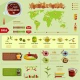 Insieme di Infographic del tè Immagine Stock