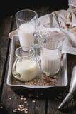 Insieme di latte non caseario Fotografia Stock