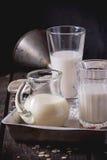 Insieme di latte non caseario Immagini Stock Libere da Diritti