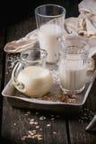 Insieme di latte non caseario Immagini Stock
