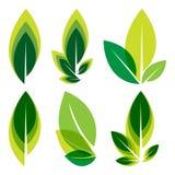 Insieme di logo delle foglie verdi Fotografia Stock Libera da Diritti