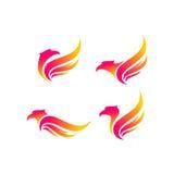 Insieme di logo di vettore dell'uccello di Eagle Immagine Stock