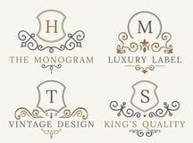 Insieme di lusso di logo Elementi eleganti della decorazione del modello calligrafico Fotografie Stock Libere da Diritti