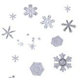 Insieme di macro dei fiocchi di neve isolati sul primo piano bianco del fondo Fotografie Stock