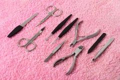 Insieme di manicure Immagine Stock
