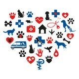 Insieme di medicina veterinaria su fondo bianco Fotografie Stock