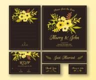 Insieme di nozze di varie carte Fotografia Stock Libera da Diritti