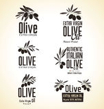 Insieme di Olive Label Fotografie Stock Libere da Diritti