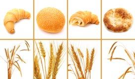 Insieme di pane e di cereali isolati su bianco immagine stock libera da diritti