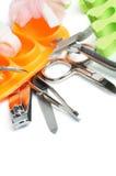 Insieme di pedicure e del manicure Fotografia Stock