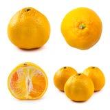 Insieme di poche viste dell'alimento sano e della vitamina del mandarino, Immagini Stock