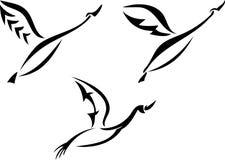 Insieme di progettazione del cigno illustrazione di stock