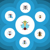 Insieme di ronzio dell'icona del ronzio, minuscolo piani, della mosca comune e di altri oggetti di vettore Inoltre include Dung,  Fotografia Stock Libera da Diritti