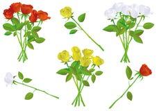 Insieme di rosa variopinto dell'illustrazione del mazzo. illustrazione di stock