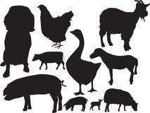 Insieme di sihouette degli animali da allevamento Fotografia Stock Libera da Diritti