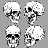 Insieme di stile disponibile del disegno del cranio royalty illustrazione gratis
